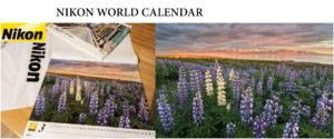 nikon-world-calendar-2015-rafal-nowosielski